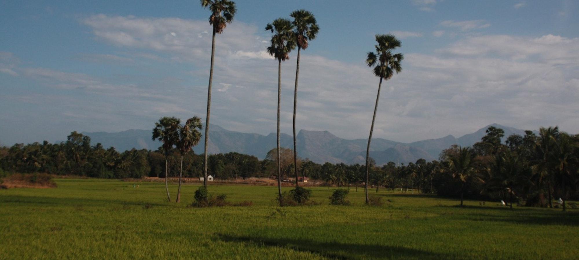 Kerala2