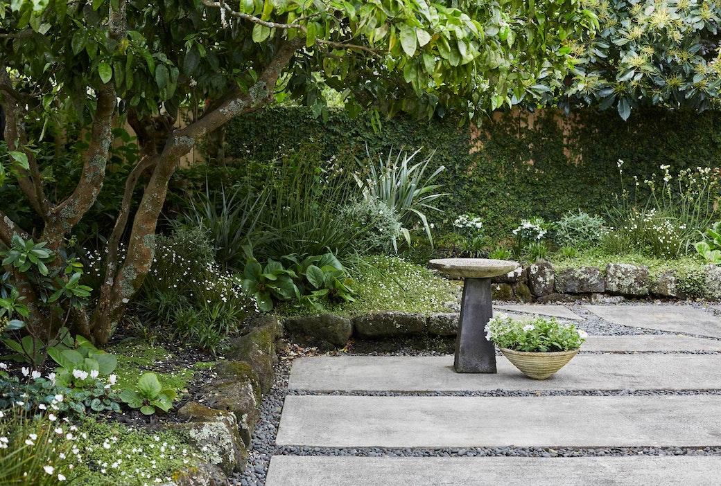 N Woo Heather Garden 6 Nov20 0371web