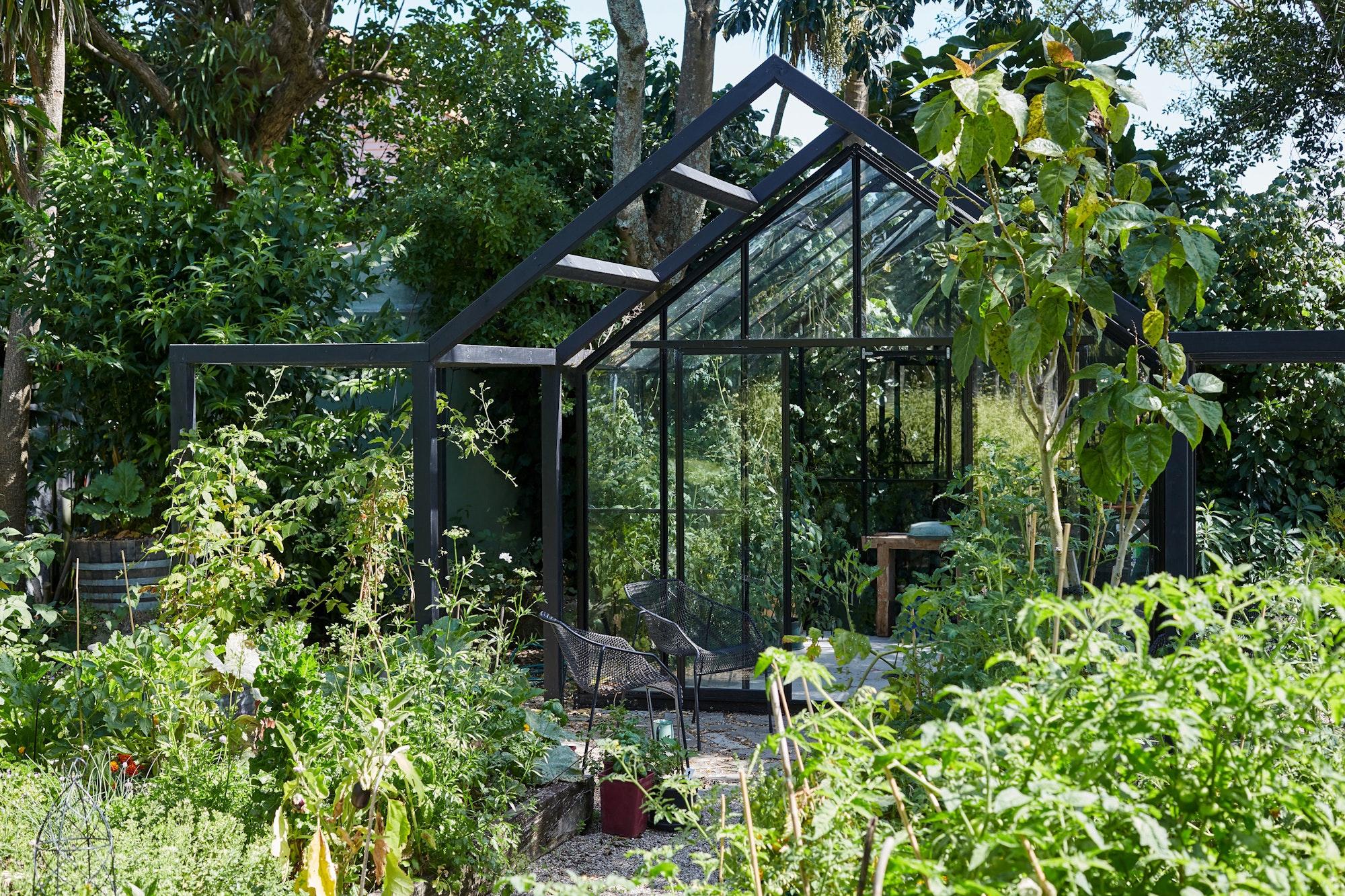 XWD Maungawhau Glasshouse 149 web